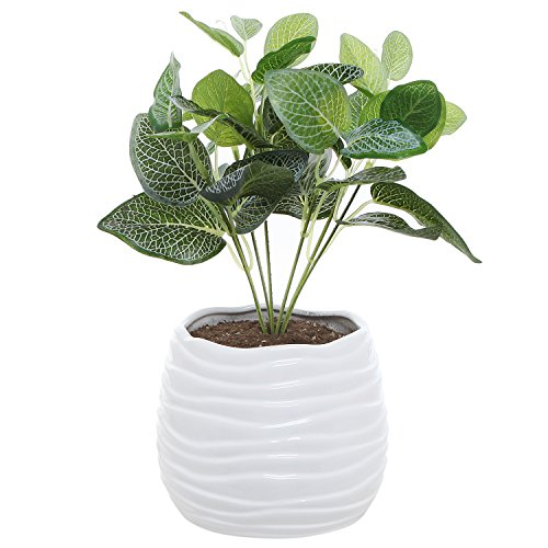 5.5 Inch White Ceramic Wavy Design Plant Flower Planter Container Pot / Decorative Centerpiece Bowl Vase (White Decorative Planter)