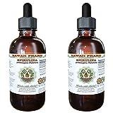 Spirulina Alcohol-FREE Liquid Extract, Organic Spirulina (Arthrospira platensis) Dried Algae Glycerite 2x4 oz