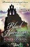 Black Narcissus: A Virago Modern Classic (Virago Modern Classics)