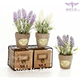 Hot 200 French Provence Lavender Seeds -- Very Fragrant Bonsai seeds