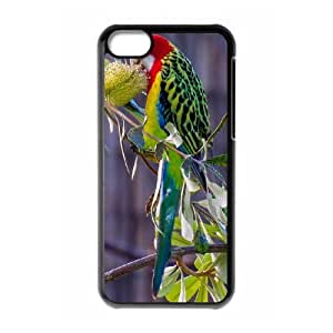 Parrot Hard Snap Phone Case Cover For Iphone 5C Case HSL490392