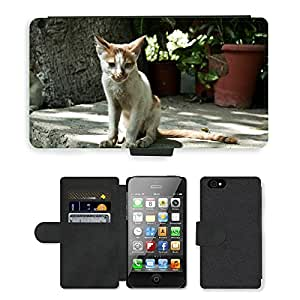 PU LEATHER case coque housse smartphone Flip bag Cover protection // M00110907 Gatos Animales Mamíferos Thin Small // Apple iPhone 4 4S 4G