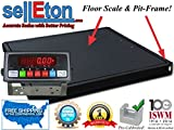 Selleton 48'' X 48'' (4'X4') Floor Scale 10,000 Lbs. X 1 Lb. With Pit Frame | Pallet Size