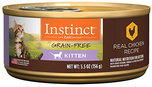 Instinct-Kitten-Grain-Free-Real-Chicken-Recipe-Natural-Wet-Canned-Cat-Food-by-Natures-Variety-55-oz-Cans-Case-of-12