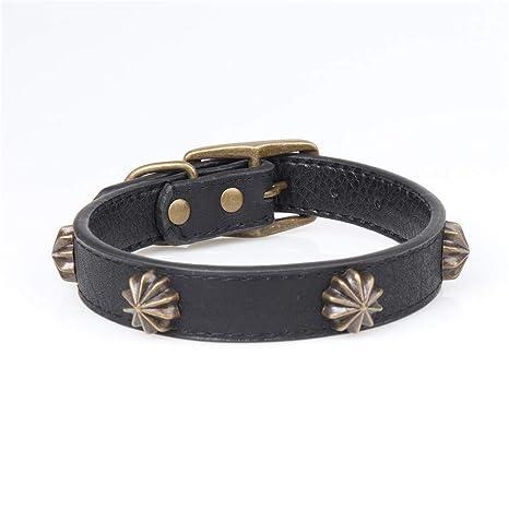 Gulunmun Collares Básicos Moda Vintage Bronce Collar para Perro PU ...