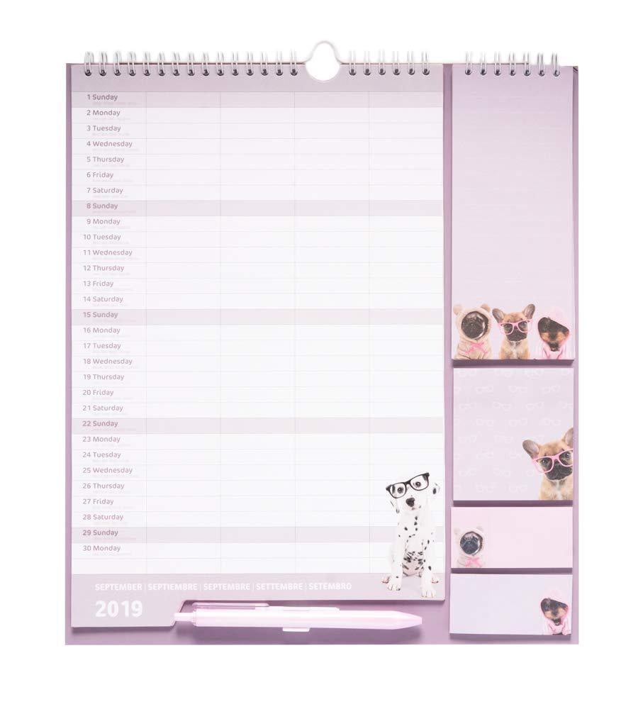 16,5x20 cm Calendario da muro con Planner Mensile 2019//2020 Family Planner da 16 mesi Studio Pets Dog Erik/®