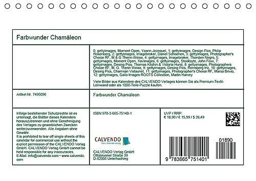 Farbwunder Chamäleon Tischkalender 2018 DIN A5 quer : Chamäleon: Die ...