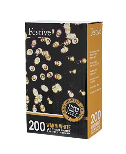200 Led Christmas Lights Warm White in Florida - 8