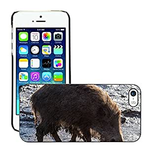Hot Style Cell Phone PC Hard Case Cover // M00307868 Wild Wild Boars Forest Nature // Apple iPhone 5 5S 5G