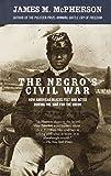 The Negro's Civil War: How American Blacks Felt and