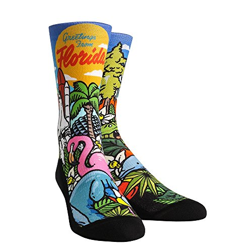 Rock 'Em Florida City Series Socks (S/M, Florida Landmark (Crystal Florida Dolphin)