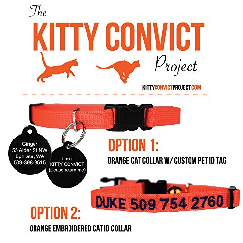 Embroidered Kitty (Kitty Convict Cat ID Collars)