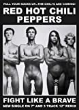 "Red Hot Chili Peppers Poster (23""x33"")"