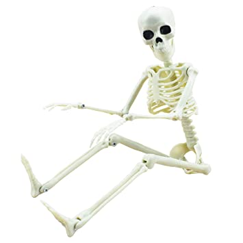 """16"""" Posable Halloween Skeleton- Full Body Halloween Skeleton with Movable Joints for Haunted House Props Decorations"""