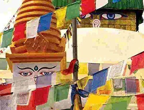 Tryforbest Tibetan Prayer Flag - Medium Traditional Design (10 x 8) - Roll of 25 Flags - Handmade - Buddhist Flags - Traditional 5 Element Colors