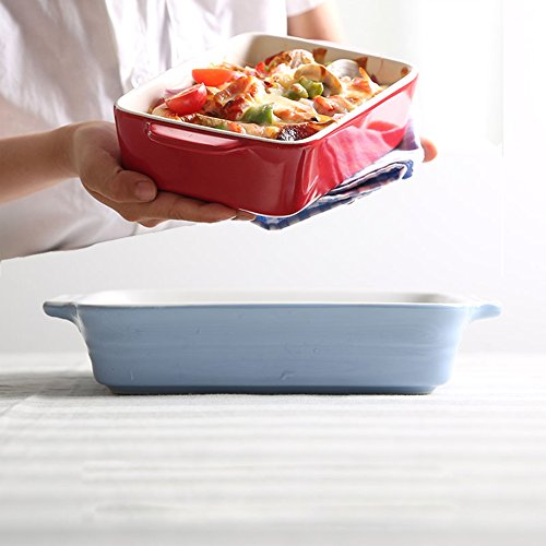 Chef's Classic Enameled Roasting and Lasagna Pan, 620ml, 7.6'' (Blue) by ISHOP-Tech