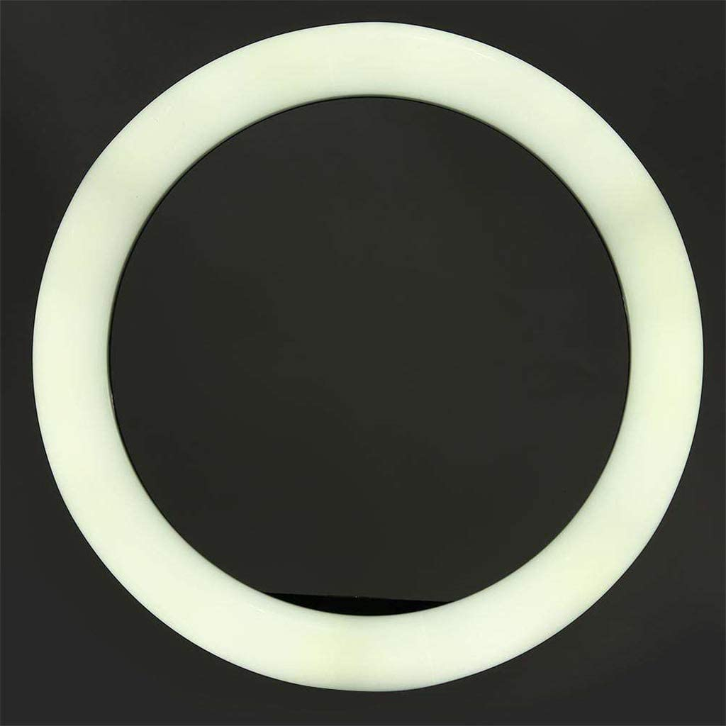 Dimmable Adjustable 3 Lights Color 10 for Streaming Makeup Gazechimp LED Ring Light