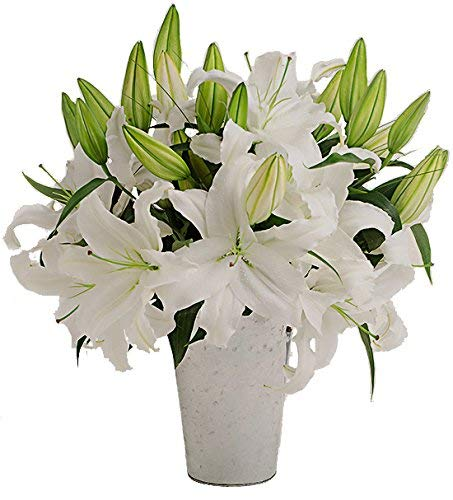 Stargazer Barn - Large Bouquet of Fragrant White Lilies with a French Bucket Style Vase - Farm Fresh