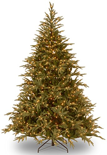 Pre Lit Christmas Trees Amazon - National Tree 6 ft. Frasier Grande Tree with Dual Color LED Lights