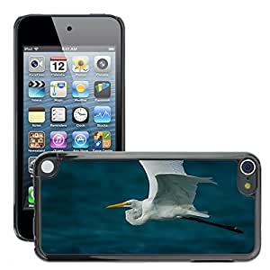 Hot Style Cell Phone PC Hard Case Cover // M00114848 Nature Animal Bird Wildlife Heron // Apple ipod Touch 5 5G 5th