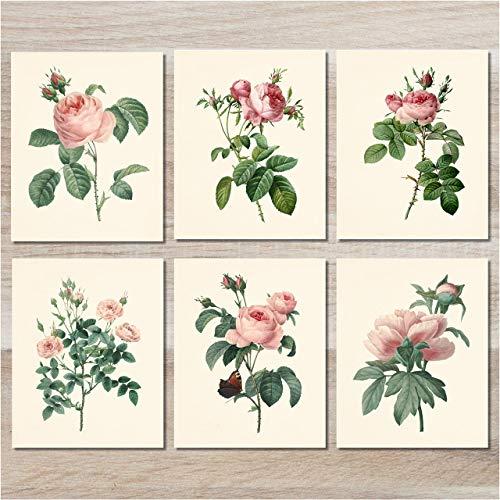 Flower Wall Art - Vintage Pink Roses Botanical Prints (Set of 6) - 8x10 - Unframed - Floral Decor
