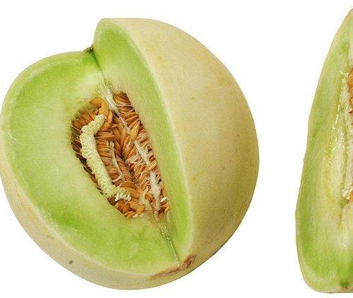 Heirloom Organic 30 Seeds Honeydew Melons Honey Dew Vegetable Edible Fruit Seeds (Honey Seed)
