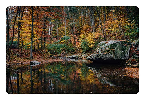 Lunarable Appalachian Trail Pet Mat for Food and Water, Autumn Scene on Otter Creek with Trees and Rocks in Fall Seasonal Colors, Rectangle Non-Slip Rubber Mat for Dogs and Cats, Multicolor