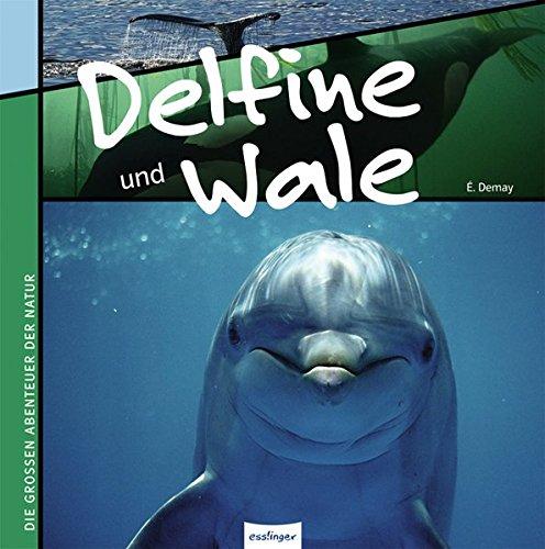 Delfine und Wale: Die großen Abenteuer der Natur
