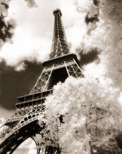 Eiffel Tower (Parc du Champ de Mars) Art Poster Print - 24x36 (36 Champs Poster)
