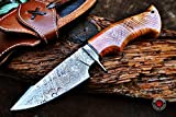 Custom Handmade Hunting Knife Bowie Knife Damascus Steel Survival Knife EDC 10'' Overall Olive Wood with Sheath