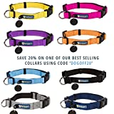 Phydeaux's Mountain Climbing Rope Dog Leash - 6