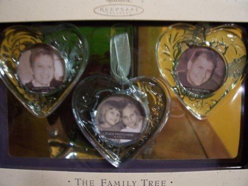 (Hallmark Keepsake Starter Kit - Hearts Family Tree Photo Holder)