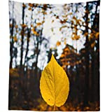 Westlake Art is proud to offer you this awesome READY TO HANG photograph reproduction tapestry. Whether you're looking for a stunning wall hanging for your living room or a mindful gift for your bff, you can't go wrong with this Ready To Hang tapestr...