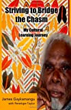 Striving to Bridge the Chasm, James Gaykamangu, 1495281744