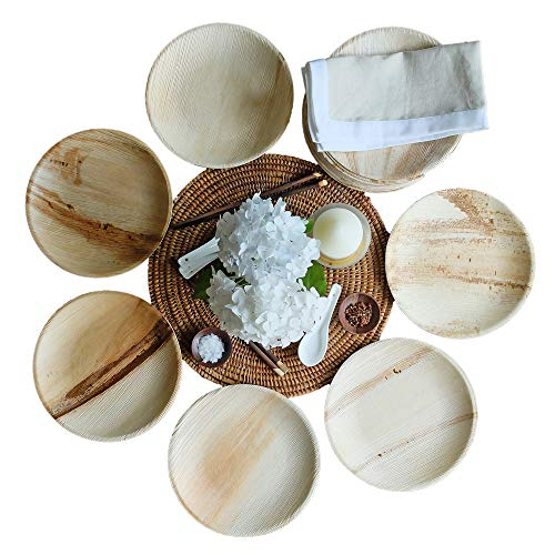 Thynk Palm Leaf Plates - 9 Inch Round - All Natural 100% Biodegradable and Compostable - Disposable Dinnerware - Perfect Party Plates - 20 Count (Round Serving Leaf Plate)