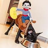 OLizee™Pet Dog Halloween Cowboy Funny Costume Dog Riders Clothes(XL)