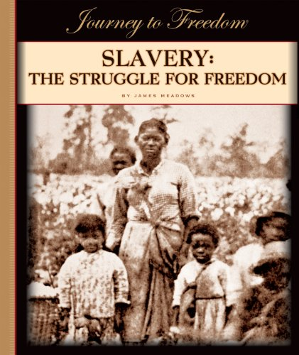 Slavery: The Struggle for Freedom (Journey to - Park 12 Meadows