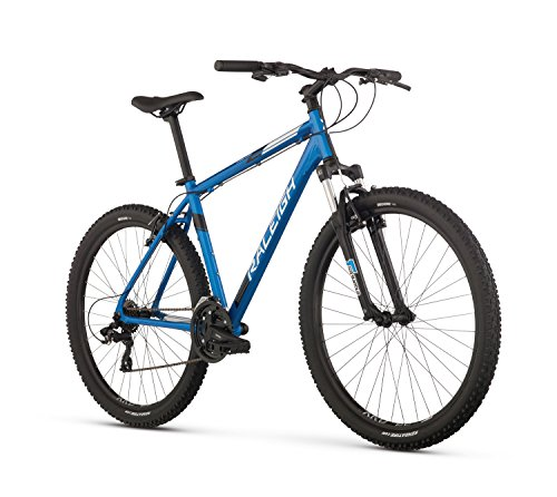 Raleigh Bikes Talus 2 Mountain Bike, 19' /Lg Frame, Blue, 19' / Large