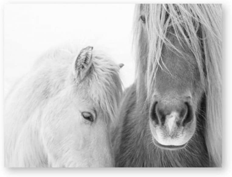 Amazon Com Dayanzai Icelandic Horse Wall Art Canvas Painting Black And White Wild Horse Posters And Prints Modern Photography Picture Farmhouse Decor 50x70cm No Frame Posters Prints