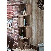 Furniture of America Forlan Bookcase in Warm Chestnut