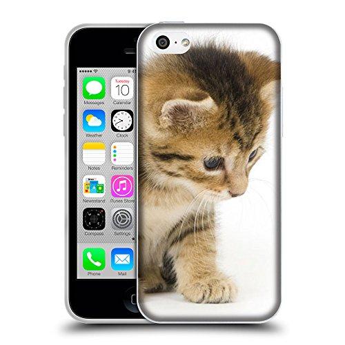 Just Phone Cases Coque de Protection TPU Silicone Case pour // V00004265 regard curieux de chaton mignon // Apple iPhone 5C