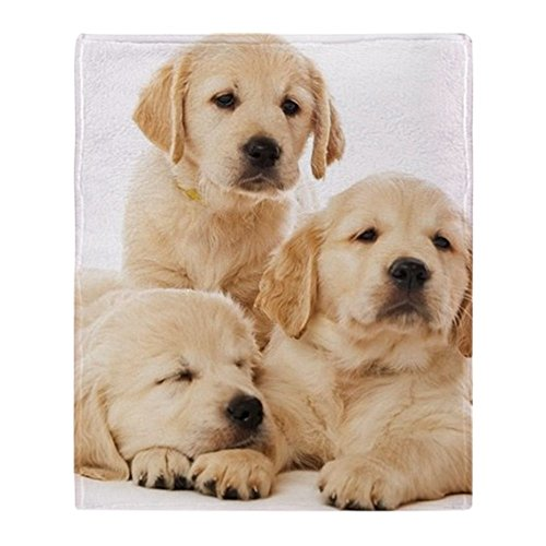 Puppies Fleece Blanket (CafePress - Golden Retriever Puppies - Soft Fleece Throw Blanket, 50