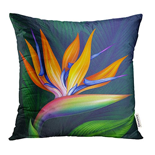 - Emvency Decorative Throw Pillow Case Cushion Cover Colorful Hawaiian Strelitzia Bird of Paradise Exotic Flower Botanical Green 20x20 Inch Cases Square Pillowcases Covers for Sofa Two Sides Print
