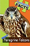 Fantastic Facts About Peregrine Falcons: Illustrated Fun Learning For Kids (Volume 1)