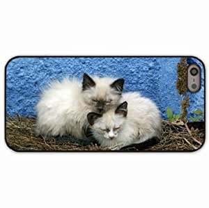 iPhone 5 5S Black Hardshell Case kittens background Desin Images Protector Back Cover