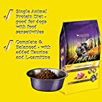 51uHNpMODeL. SS150  - Zignature Turkey Dry Dog Food
