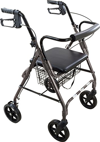 Roscoe Medical ROS-RL8GR Deluxe Wheel Rollator/Rolling Walker with Padded Seat, 8