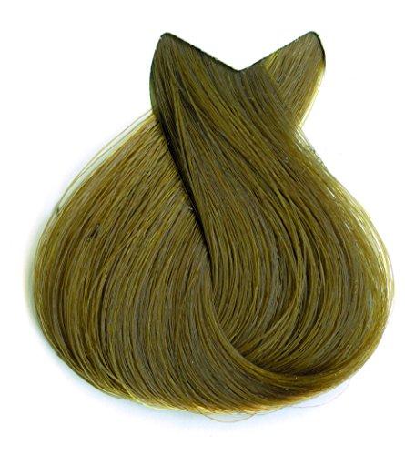 Tahe Botanic Gold Tinte Cabello Profesional/Tinte Pelo/Coloración Capilar Permanente Sin Amoniaco Nº 6.34 Rubio Oscuro Dorado Acobrado, 100 ml: Amazon.es: ...