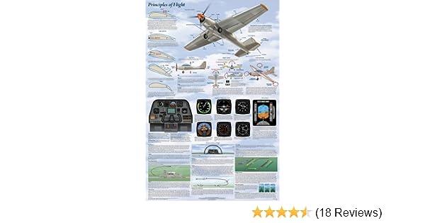 Amazon.com: (24 x 36) Principles of Flight Poster: Cockpit Poster: Posters & Prints