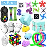 26 Pack Sensory Toys Set, Relieves Stress and Anxiety Fidget Toy for Children Adults, Special Toys Assortment for Birthday Party Favors, Classroom Rewards Prizes, Carnival, Piñata Goodie Bag Fillers